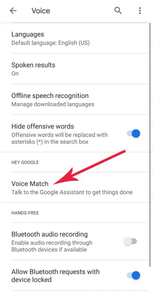 Voice Match Page Google Assistant